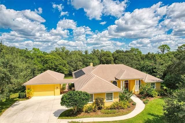 6927 Riversedge Street Circle, Bradenton, FL 34202 (MLS #N6117461) :: SunCoast Home Experts