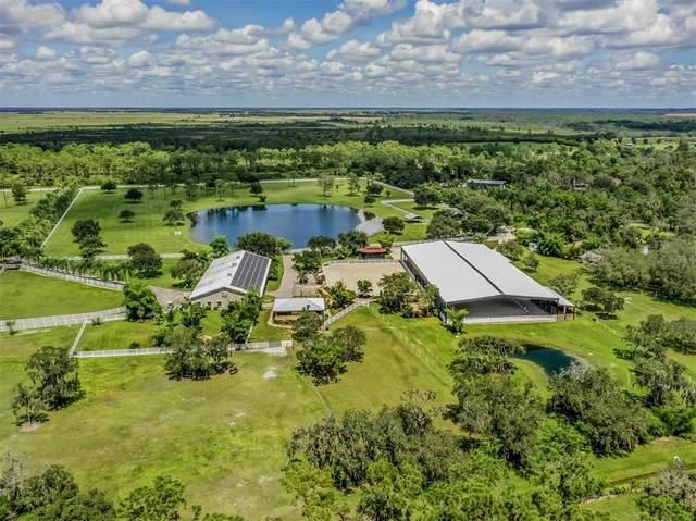 1680 Sandy Pine Drive, Punta Gorda, FL 33982 (MLS #N6117569) :: Orlando Homes Finder Team