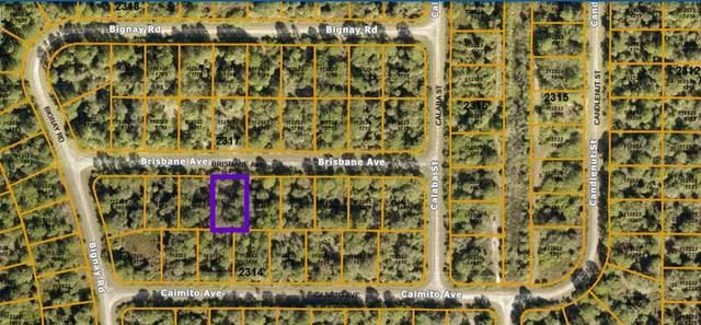 Brisbane Avenue, North Port, FL 34288 (MLS #N6117608) :: RE/MAX Elite Realty