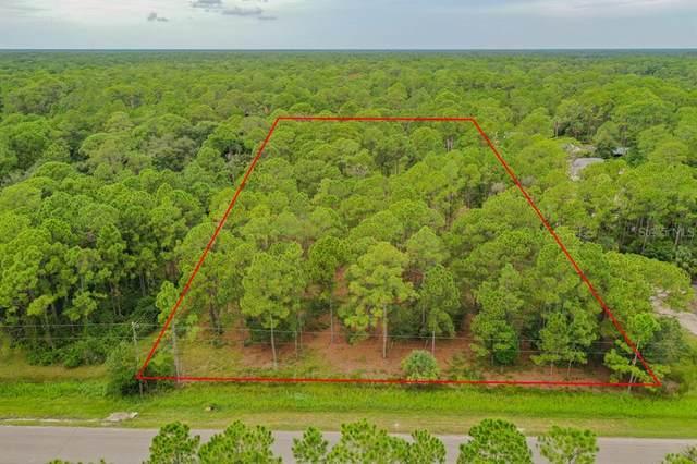 000 Tidwell Street, North Port, FL 34291 (MLS #N6117615) :: Everlane Realty