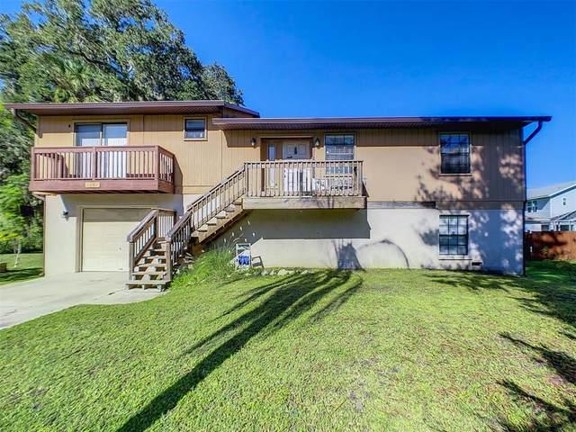 4207 5TH AVE W, Palmetto, FL 34221 (MLS #N6117621) :: Everlane Realty