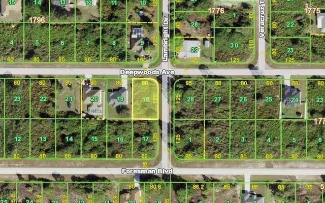 12527 Deepwoods Avenue, Port Charlotte, FL 33981 (MLS #N6117646) :: GO Realty