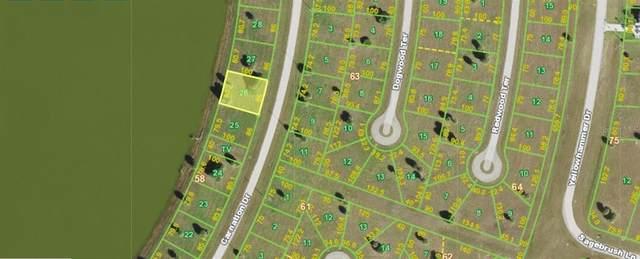 51 Carnation Drive, Placida, FL 33946 (MLS #N6117705) :: The Paxton Group