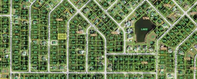 5517 Gulfport Terrace, Port Charlotte, FL 33981 (MLS #N6117887) :: Lockhart & Walseth Team, Realtors