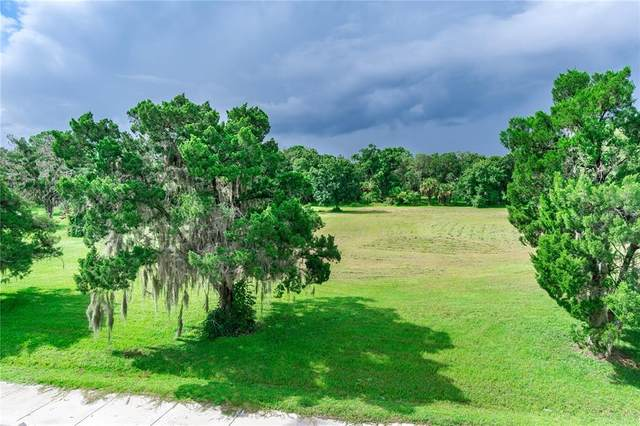 1227 Dona Way, Nokomis, FL 34275 (MLS #N6117986) :: Team Turner