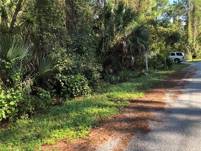 Daphne Road, North Port, FL 34288 (MLS #N6118046) :: Delgado Home Team at Keller Williams