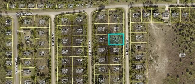 852 Burrows Avenue, Lehigh Acres, FL 33974 (MLS #N6118096) :: Lockhart & Walseth Team, Realtors