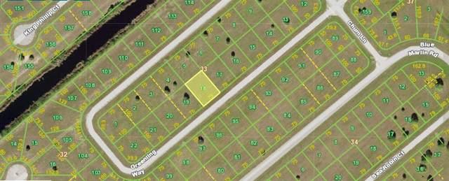 12484 Greenling Way, Placida, FL 33946 (MLS #N6118122) :: Medway Realty