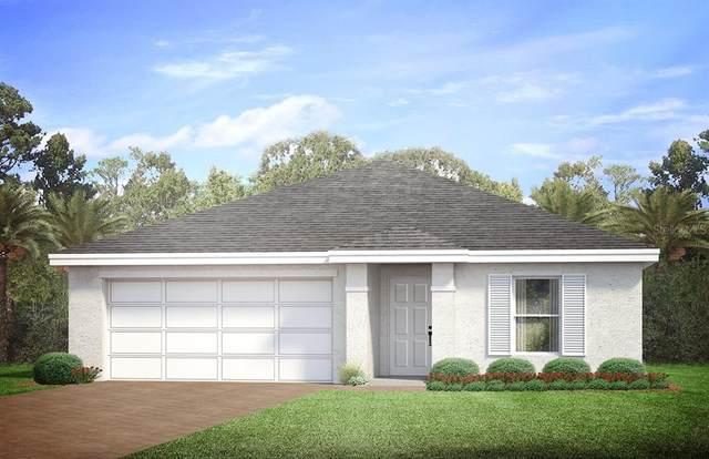 12129 Grosspoint Avenue, Port Charlotte, FL 33981 (MLS #N6118170) :: Bustamante Real Estate