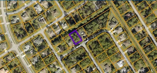 Mcphail Avenue Lot 28, North Port, FL 34291 (MLS #N6118177) :: Griffin Group