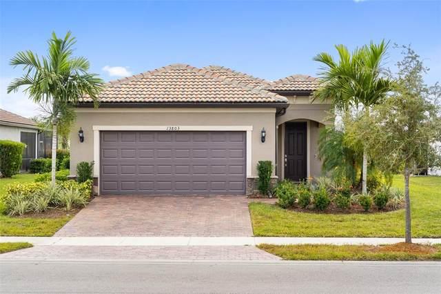 13803 Campoleone Street, Venice, FL 34293 (MLS #N6118198) :: Stiver Firth International