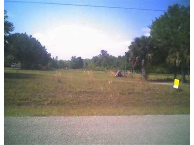 8970 Atlas Drive DR, Saint Cloud, FL 34773 (MLS #O4771269) :: Team Pepka