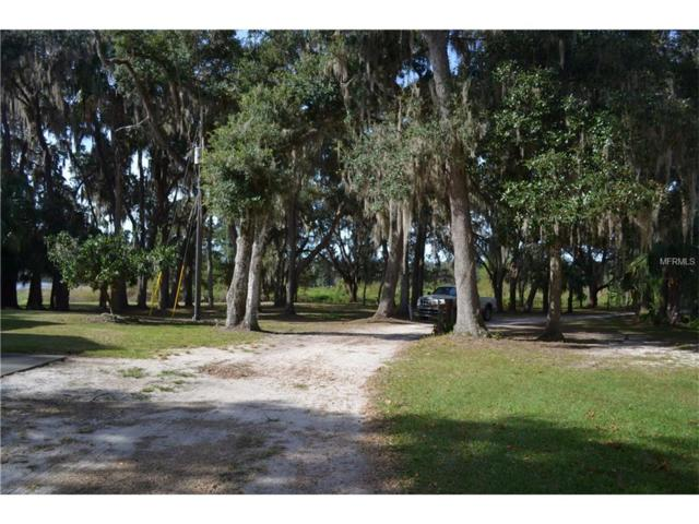 14351 209TH TERRACE Road, Fort Mc Coy, FL 32134 (MLS #O5474520) :: The Duncan Duo Team