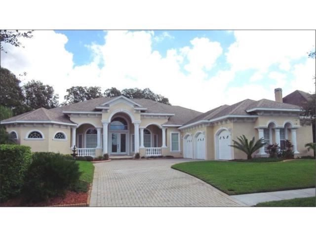 19611 Eagle Crest Drive, Lutz, FL 33549 (MLS #O5477288) :: The Duncan Duo & Associates