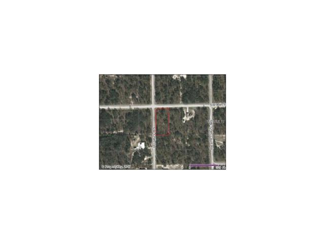 On The Corner Of Sw 125Th Ter And Sw 85Th Pl, Dunnellon, FL 34432 (MLS #O5489082) :: G World Properties