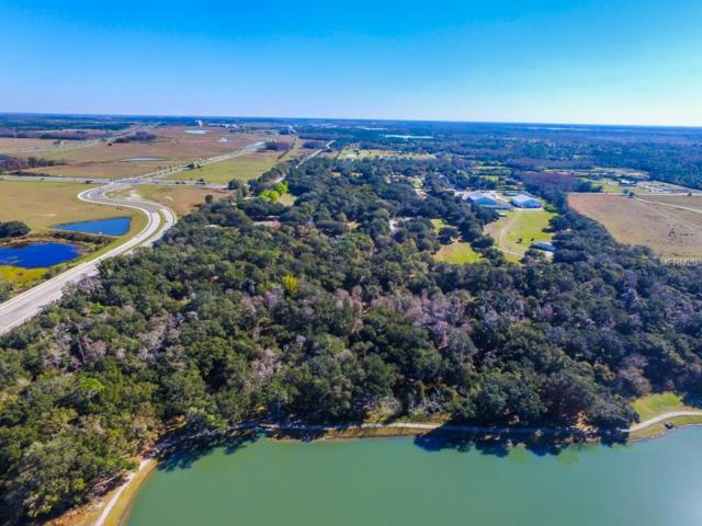 14140 Boggy Creek Road, Orlando, FL 32824 (MLS #O5490226) :: Griffin Group