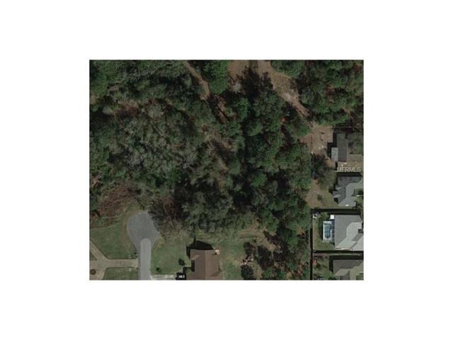 0 Bastings Court, Orlando, FL 32833 (MLS #O5495860) :: Premium Properties Real Estate Services