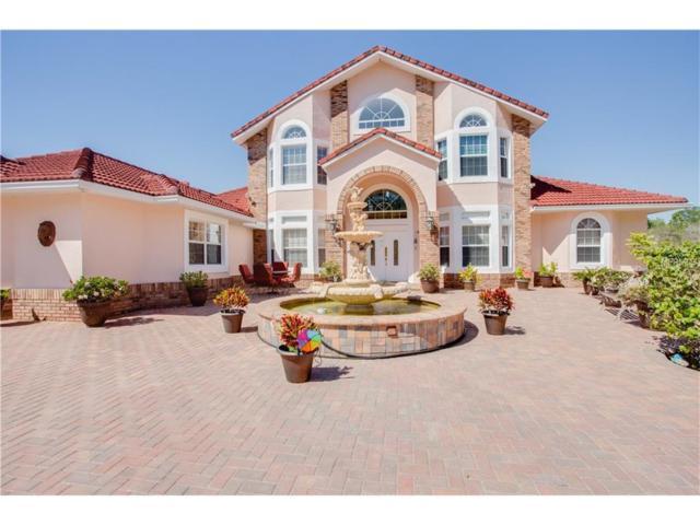 Kissimmee, FL 34747 :: G World Properties