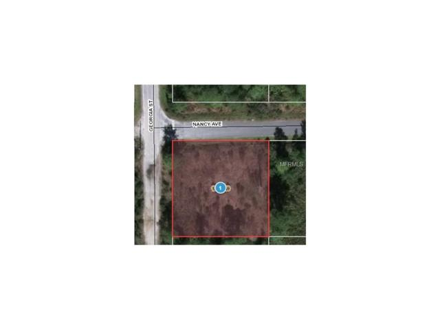 Georgia Street, Paisley, FL 32767 (MLS #O5499961) :: Griffin Group