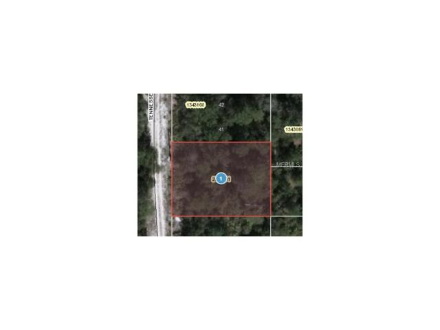 Tennessee Street, Paisley, FL 32767 (MLS #O5499964) :: Griffin Group