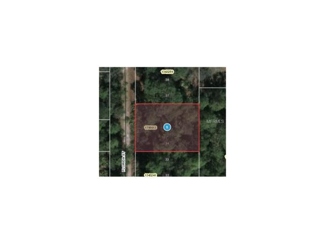 Florida Street, Paisley, FL 32767 (MLS #O5499966) :: Griffin Group