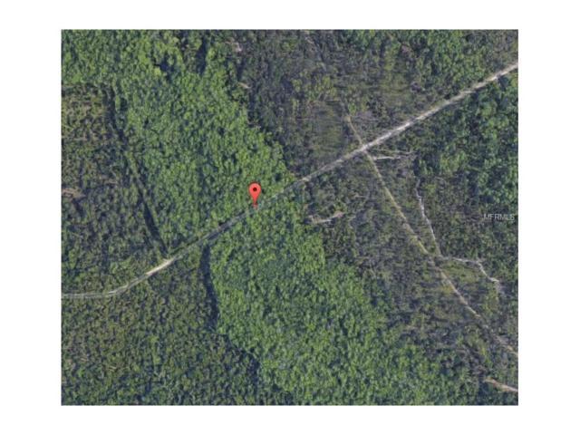 No Street, Lake Helen, FL 32744 (MLS #O5506743) :: Godwin Realty Group