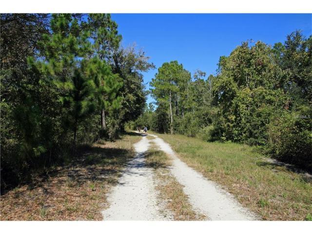 Sweetwater Trail, Kissimmee, FL 34747 (MLS #O5510385) :: KELLER WILLIAMS CLASSIC VI