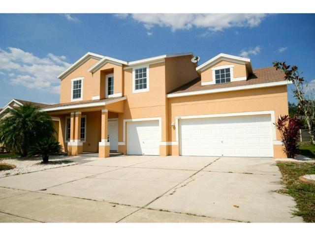 11336 Bridge Pine Drive, Riverview, FL 33569 (MLS #O5510602) :: The Duncan Duo & Associates