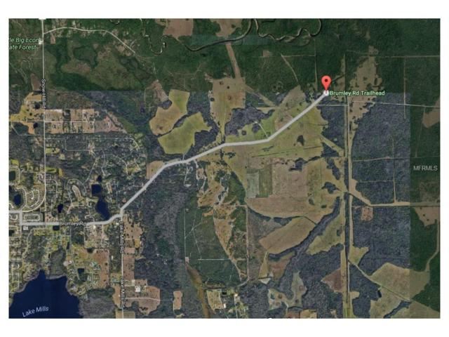 Brumley Road, Chuluota, FL 32766 (MLS #O5511574) :: The Lockhart Team