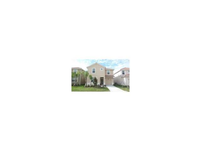 2920 Banana Palm Drive, Kissimmee, FL 34747 (MLS #O5511745) :: The Duncan Duo Team