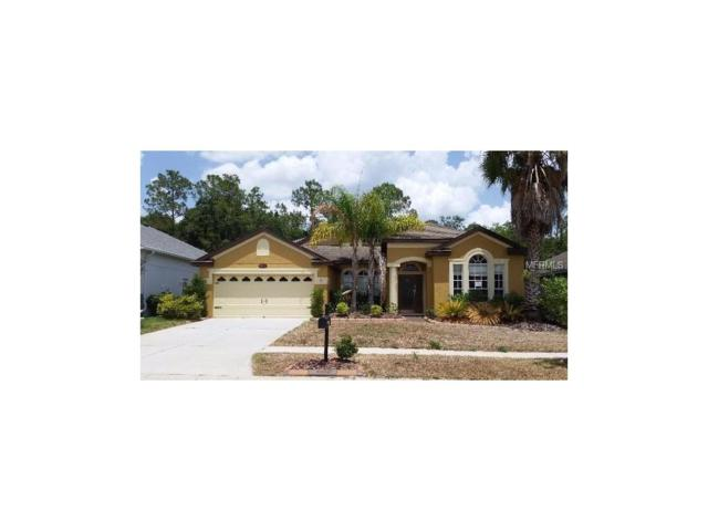 6838 Pine Springs Drive, Wesley Chapel, FL 33545 (MLS #O5514375) :: The Duncan Duo & Associates