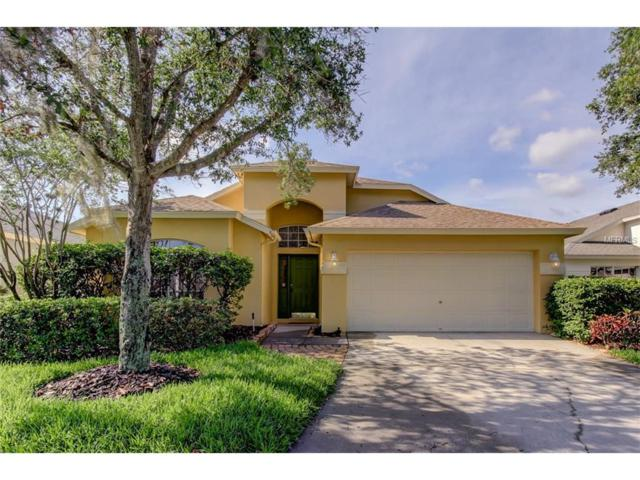 9958 Stockbridge Drive, Tampa, FL 33626 (MLS #O5515262) :: The Duncan Duo & Associates