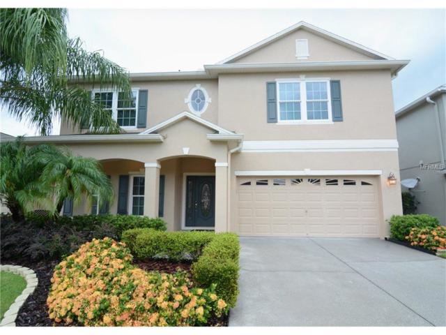 17815 Ibis Landing Way, Orlando, FL 32820 (MLS #O5517323) :: RE/MAX Innovation