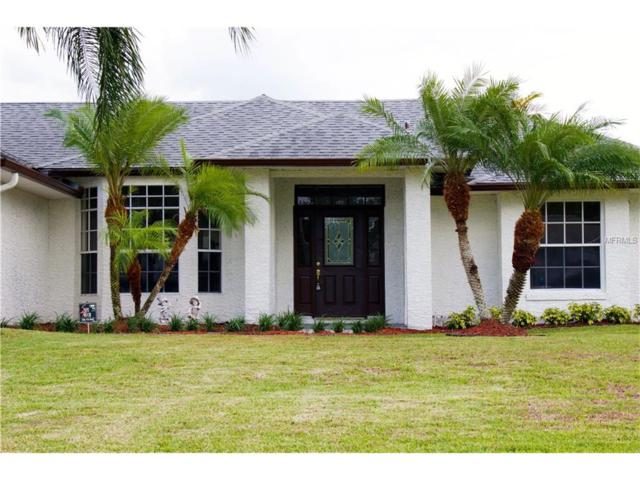 4112 Cannon Court, Kissimmee, FL 34746 (MLS #O5518483) :: RE/MAX Realtec Group