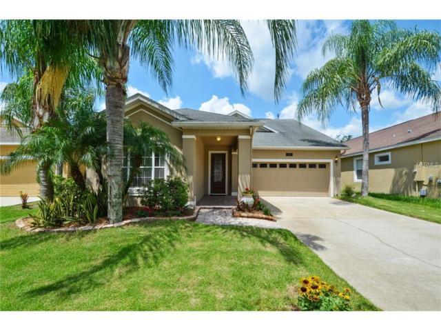 5066 Blue Major Drive, Windermere, FL 34786 (MLS #O5519639) :: Premium Properties Real Estate Services