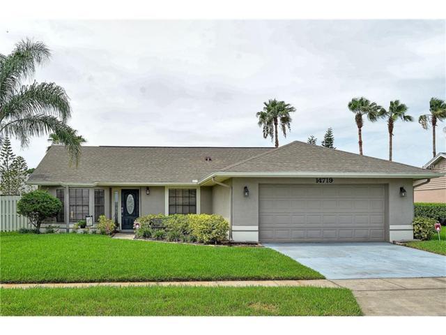 14719 Eagles Crossing Drive, Orlando, FL 32837 (MLS #O5519814) :: RE/MAX Realtec Group