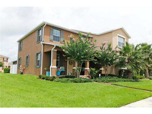 Winter Garden, FL 34787 :: RE/MAX Realtec Group