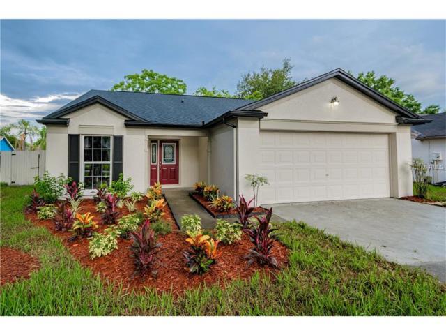 1530 Baker Road, Lutz, FL 33559 (MLS #O5519930) :: Griffin Group