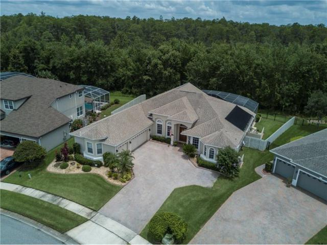 14628 Braddock Oak Drive, Orlando, FL 32837 (MLS #O5519936) :: RE/MAX Realtec Group