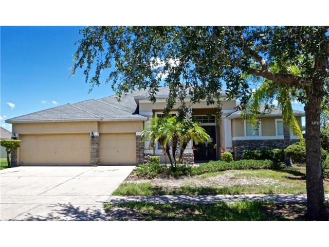 4931 Fells Cove Avenue, Kissimmee, FL 34744 (MLS #O5520007) :: Griffin Group
