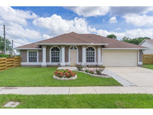 11001 Cypress Leaf Drive, Orlando, FL 32825 (MLS #O5520012) :: RE/MAX Realtec Group
