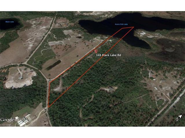 348 Black Lake Road, Osteen, FL 32764 (MLS #O5520387) :: Arruda Family Real Estate Team