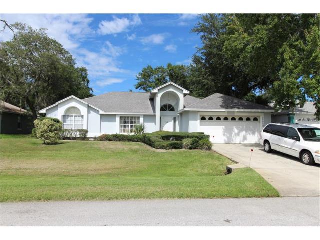 2909 Eldiente Way, Kissimmee, FL 34758 (MLS #O5520439) :: Premium Properties Real Estate Services