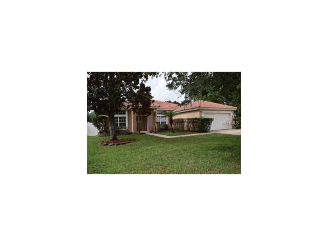 11330 Arborside Bend Way #1, Windermere, FL 34786 (MLS #O5520640) :: Premium Properties Real Estate Services