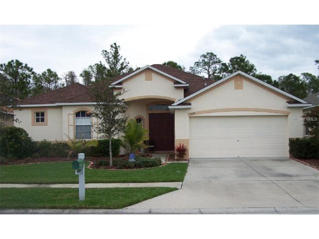 19209 Pelican Ridge Lane, Tampa, FL 33647 (MLS #O5521508) :: Team Bohannon Keller Williams, Tampa Properties