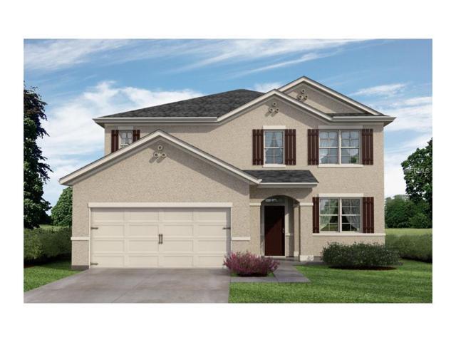 155 Lazy Willow Drive, Davenport, FL 33837 (MLS #O5522124) :: The Duncan Duo & Associates