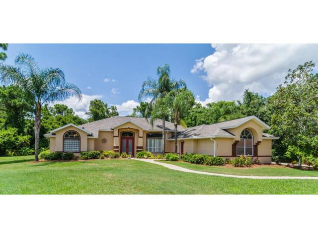14003 Myrtlewood Drive, Orlando, FL 32832 (MLS #O5524916) :: Godwin Realty Group