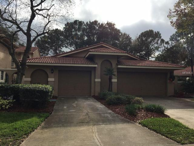 8126 Sandpoint Boulevard, Orlando, FL 32819 (MLS #O5525074) :: Griffin Group