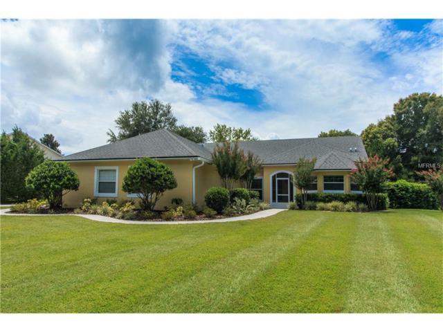 7368 Chesterhill Circle, Mount Dora, FL 32757 (MLS #O5525085) :: KELLER WILLIAMS CLASSIC VI