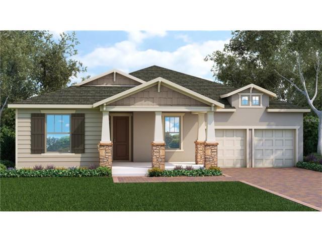 13531 Gorgona Isle Drive, Windermere, FL 34786 (MLS #O5525602) :: Alicia Spears Realty